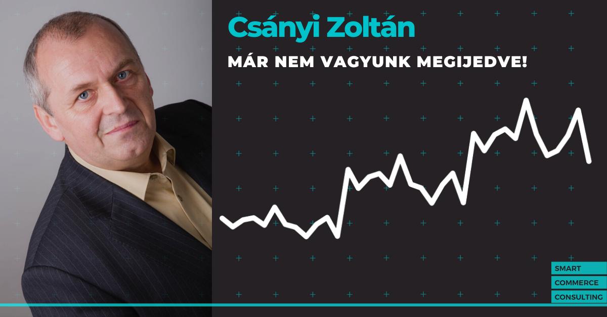 """""""Már nem vagyunk megijedve"""" – interjú Csányi Zoltánnal, a Dressa.hu vezetőjével"""